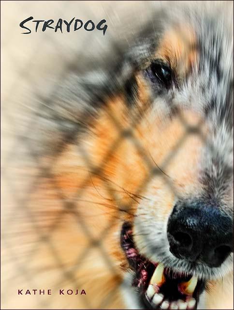 Straydog - • Hardcover dustjacket